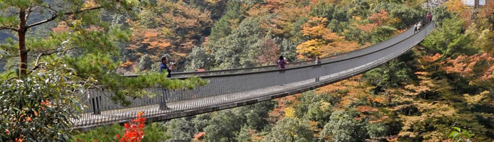 五家荘(梅ノ木轟公園吊橋)